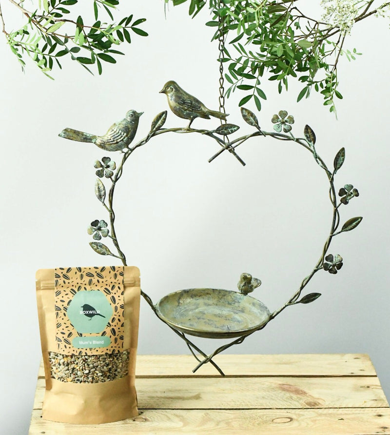 Heart Bird Feeder Gift Set