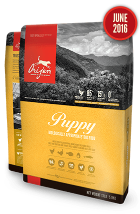 Holistic Dog Food Orijen Puppy 25lb