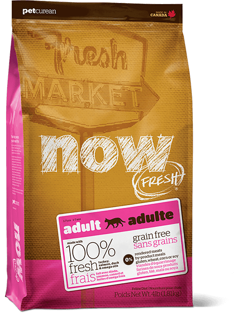 Holistic Cat Food Petcurean Now Fresh Grain Free Adult Food 4lb