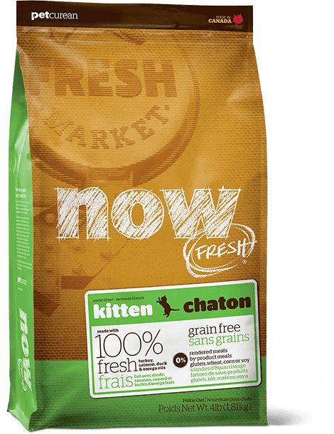 Holistic Kitten Food Petcurean Now Fresh Grain Free Food 4lb