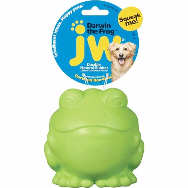 JW Pet Darwin the Frog Squeaky Dog Toy Large Green