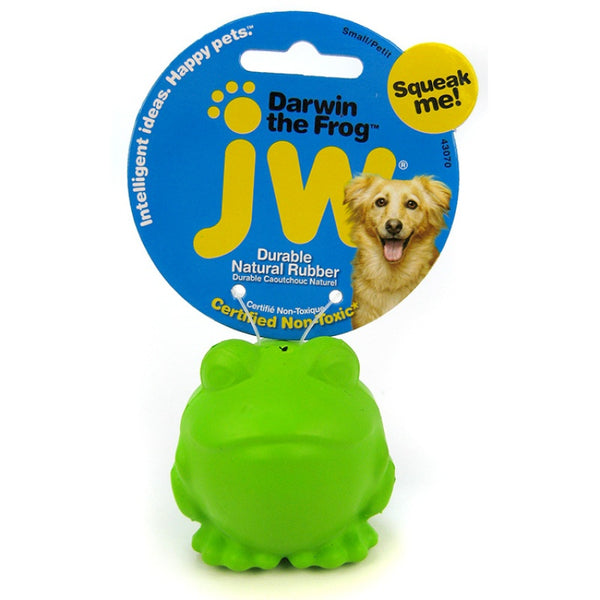 JW Pet Darwin the Frog Squeaky Dog Toy Small Green