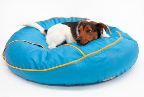 Dog in barka parka bean bag
