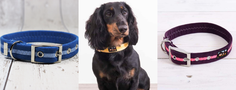 Best Collars for Dachshunds - Vegan Suede Oscar and Hooch Dog Collars