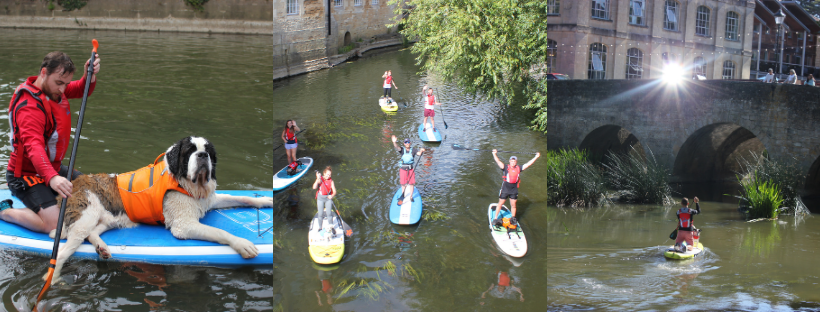 paddleboarding sups on the river avon with dogs