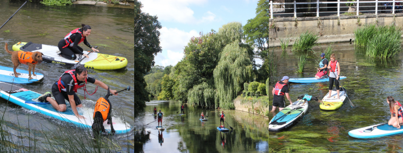 paddleboarding with dogs in bradford on avon near bath and bristol