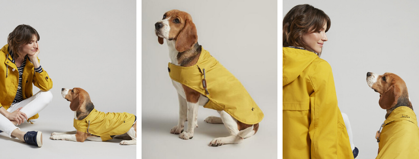 joules yellow raincoat for dogs