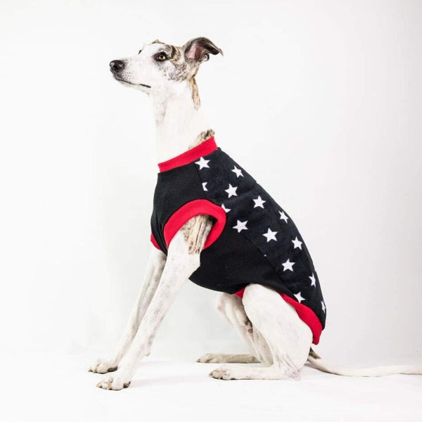 Dogsnug Starry Whippet Jumper - Doghouse