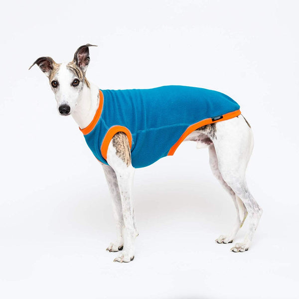 Dogsnug Blue and Orange Dog Jumper - Doghouse