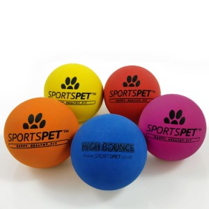 SportsPet Tough Bounce Rubber Ball - Doghouse