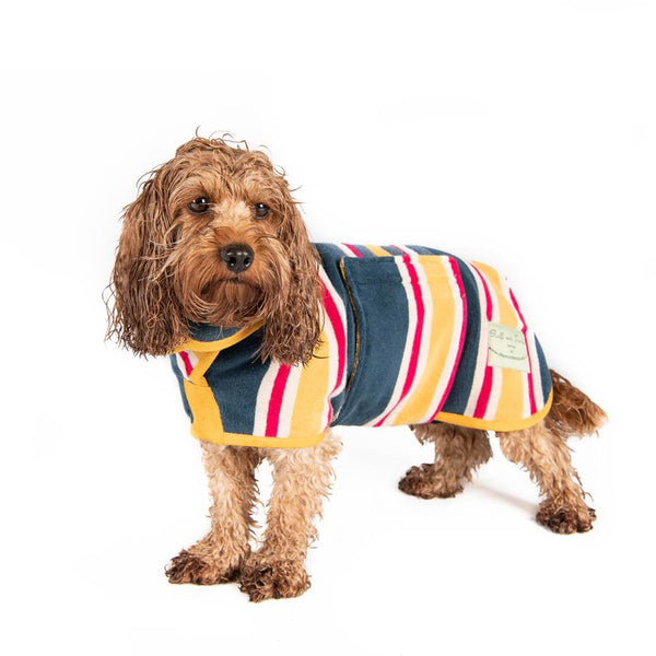 The Ultimate Dog Drying Coat - Beach Stripe FREE SHAMPOO! - Doghouse