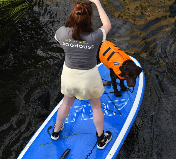 Stand Up Paddleboarding with Dogs - 2hr Safari - Doghouse