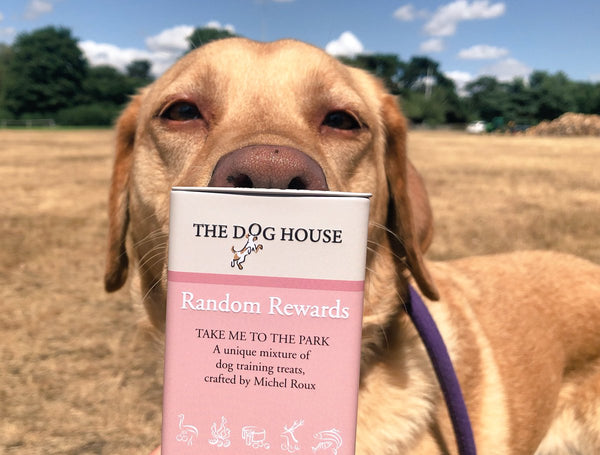 The Dog House Random Rewards - Doghouse