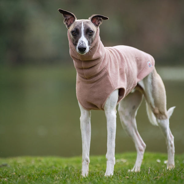Whippet Fleece Jumper