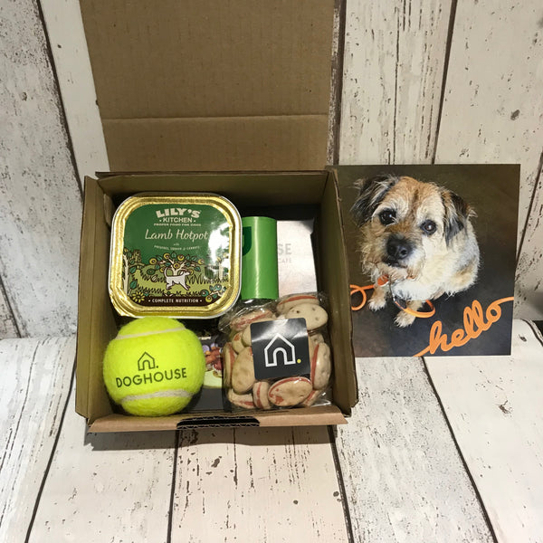 Woof Box - Doghouse