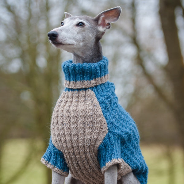 Dogs in Jumpers by Debbie Humphreys - Doghouse
