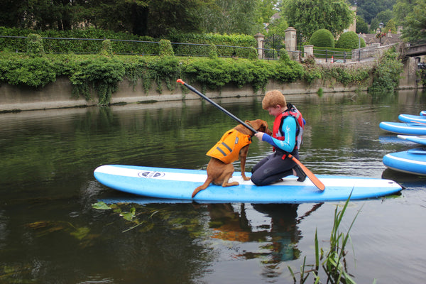 Stand Up Paddleboarding with Dogs - 15th September - Doghouse