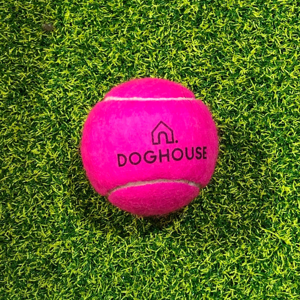 Doghouse Tennis Ball - Doghouse