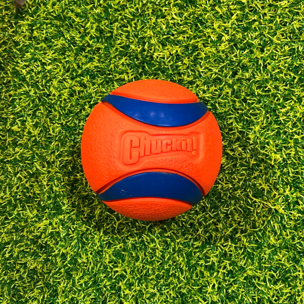 The ChuckIt Ultra Ball - Doghouse