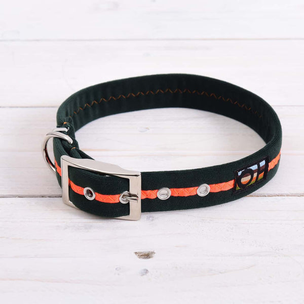 Neon Orange Oscar and Hooch Dog Collar - Doghouse