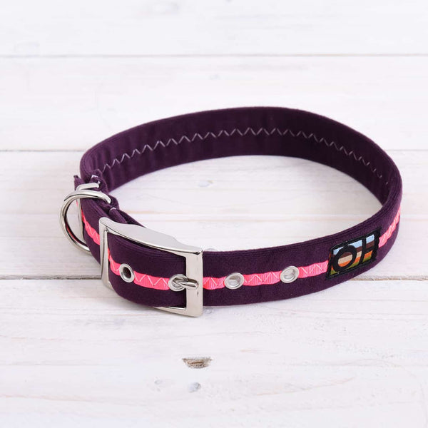 Neon Pink Oscar and Hooch Dog Collar - Doghouse