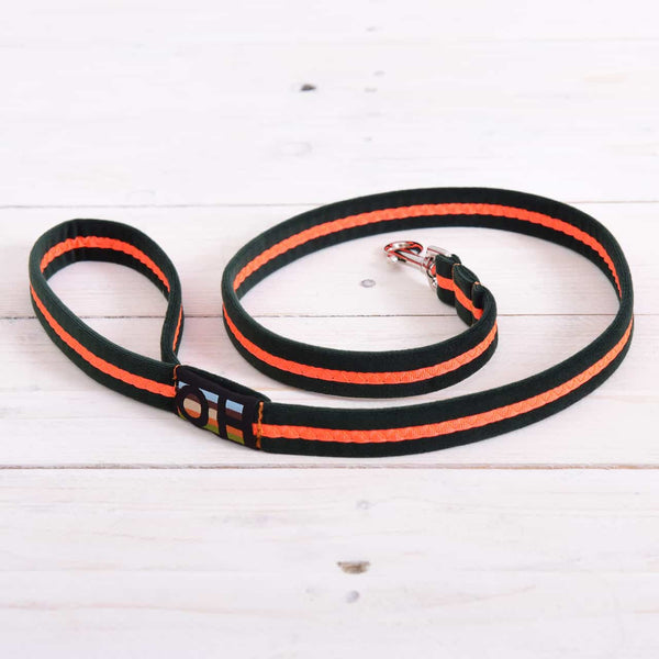 Neon Oscar and Hooch Dog Lead