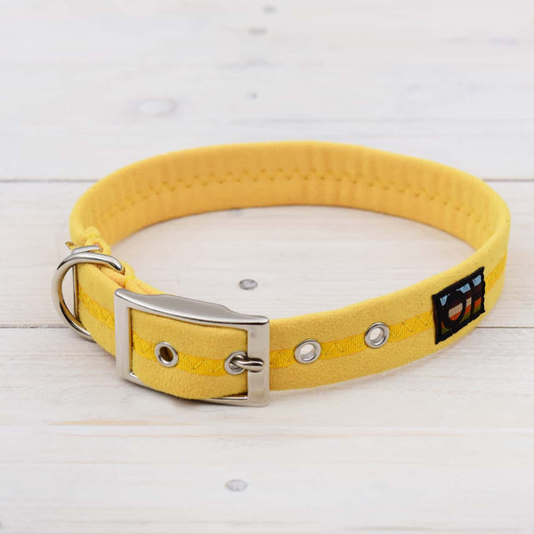 Yellow Oscar and Hooch Dog Collar - Doghouse
