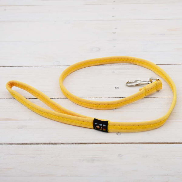 Yellow Oscar and Hooch Dog Collar