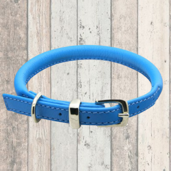 Blue Rolled Leather Dog Collar