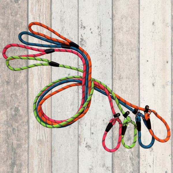 Dog & Co Neon Rope Slip Lead