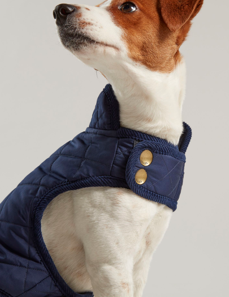 Joules Newdale Quilted Dog Coat in Navy Blue - Doghouse