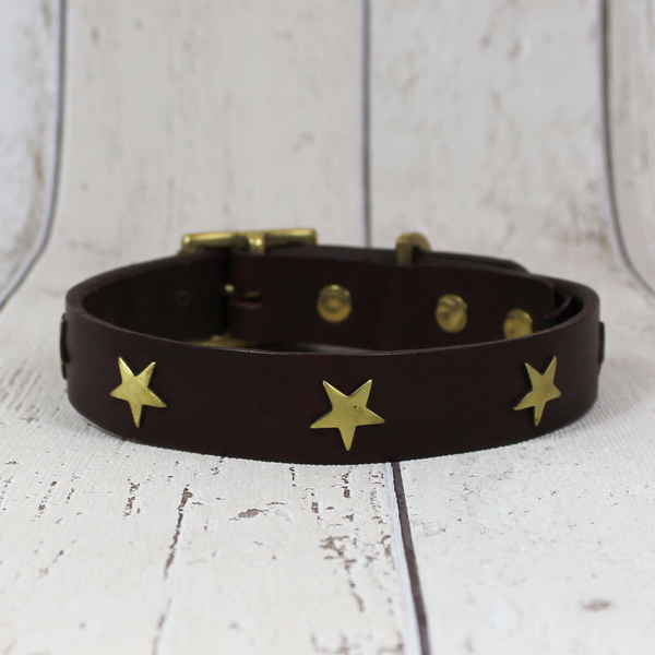 Chocolate Star Creature Clothes Dog Collar - Doghouse