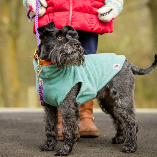 Dog Fleece Jumper - Doghouse