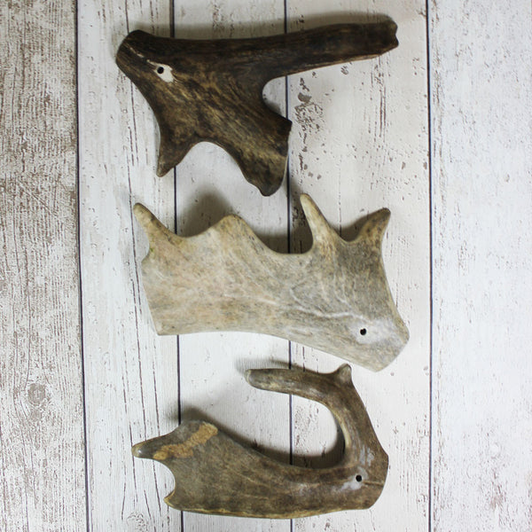 Fallow Antler Chews - Doghouse