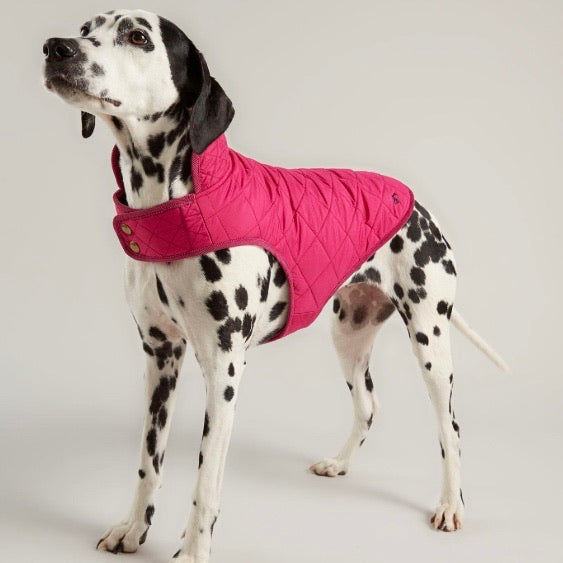 Joules Newdale Quilted Dog Coat in Fuchsia Pink - Doghouse