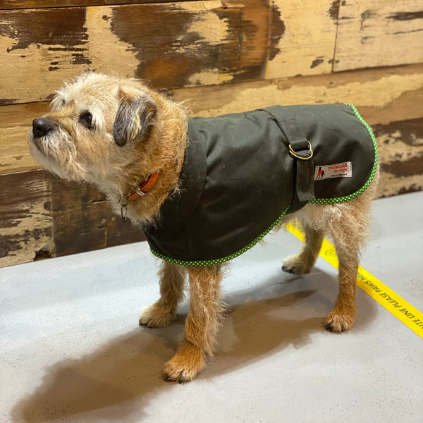Wax Jacket for Dogs - Doghouse