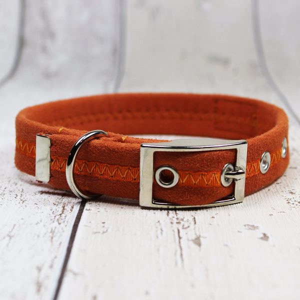 Orange Oscar and Hooch Dog Collar - Doghouse