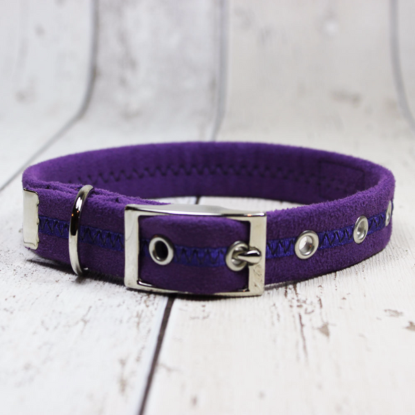 Purple Oscar and Hooch Dog Collar - Doghouse