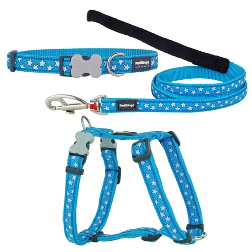 Puppy Harness, Collar and Lead Set