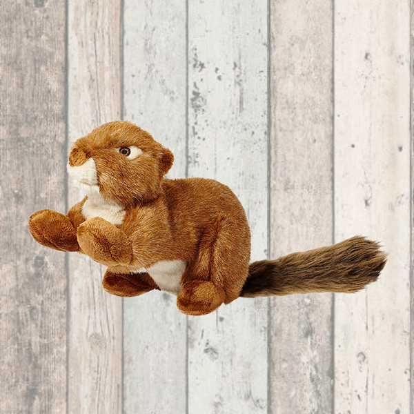 Red Squeakerless Squirrel Dog Toy