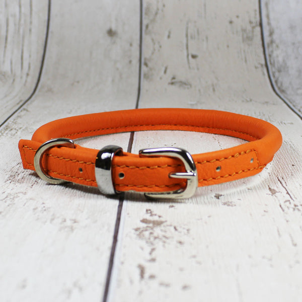 Rolled Leather Dog Collar Orange - Doghouse