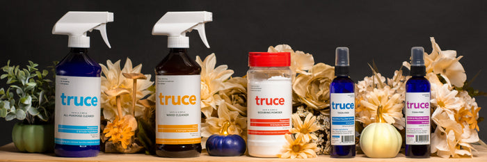 Fall Special Bundle, Complete Toxic-Free Cleaning for Every Room and Surface