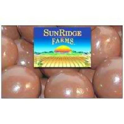 Sunridge Farms Carob Malt Balls (1x10lb ) - Rhea Manor Natural Market
