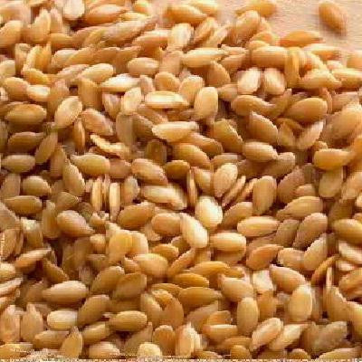 Seeds Golden Flax Seeds (1x25lb ) - Rhea Manor Natural Market
