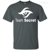 CustomCat Apparel Custom Ultra Cotton T-Shirt / Dark Heather / Small Dota 2 Team Secret Tee