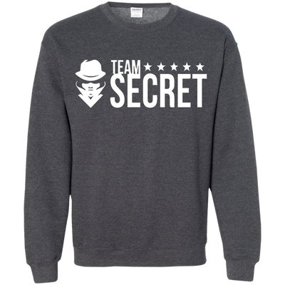 CustomCat Apparel Printed Crewneck Pullover Sweatshirt  8 oz / Dark Heather / Small Dota 2 Team Secret Tee V2