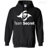 CustomCat Apparel Pullover Hoodie 8 oz / Black / Small Dota 2 Team Secret Tee