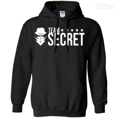 CustomCat Apparel Pullover Hoodie 8 oz / Black / Small Dota 2 Team Secret Tee V2