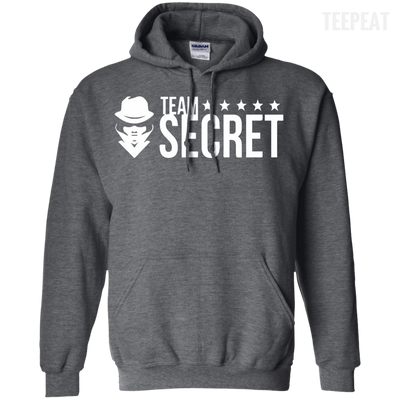 CustomCat Apparel Pullover Hoodie 8 oz / Dark Heather / Small Dota 2 Team Secret Tee V2