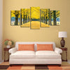 Yellow Leaves Trees Landscape View - 5 Piece Canvas Painting-Canvas-TEEPEAT